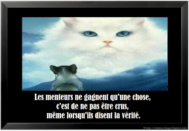 Citation mensonge en image