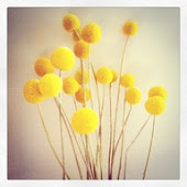 والأصفر قد يكون جميلاً رغم أى شىء