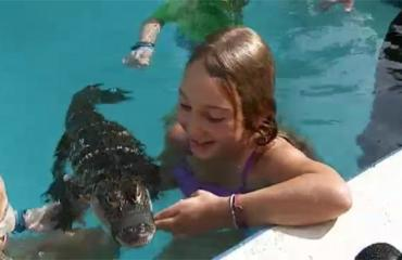 Mommy Tinty And Kids Swimming With Alligators Kids Pool Parties Shut Down In Florida