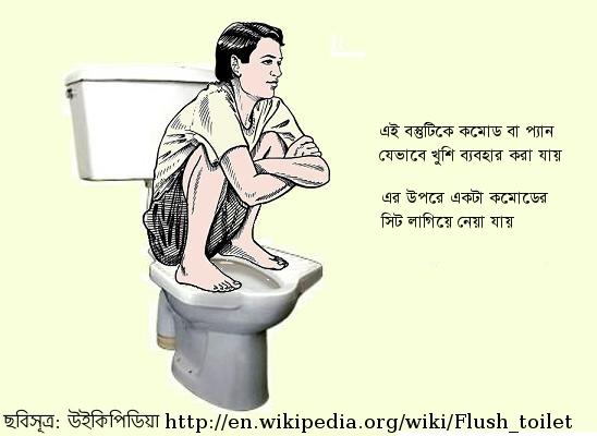 http://1.bp.blogspot.com/-MIeLBKSxntg/Tu0KCrMUfwI/AAAAAAAABKM/9vKb8RoJQro/s1600/Pedestal-squat-toilet.jpg