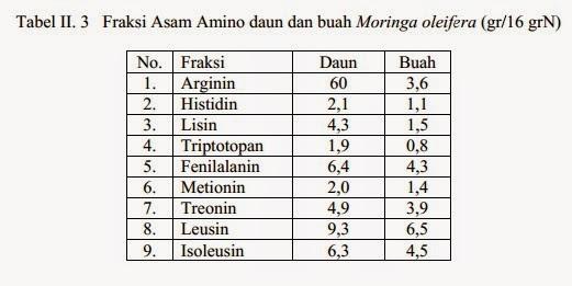 fraksi asam amino daun buah kelor
