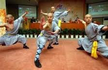 Phim Thiếu Lâm Nam Phái