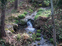 El Rec de la Riba al seu pas sota el Serrat de Castelló