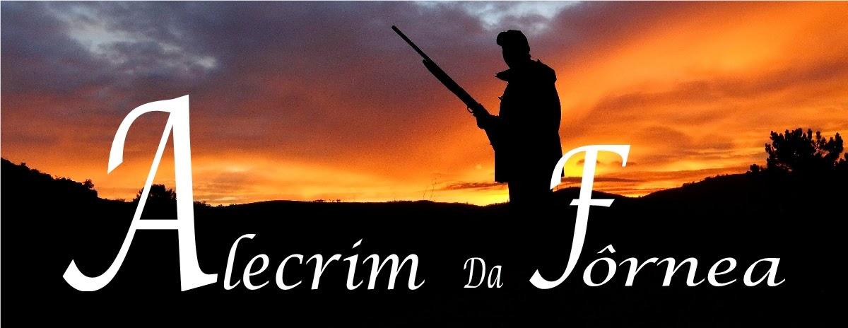 Blog de caça