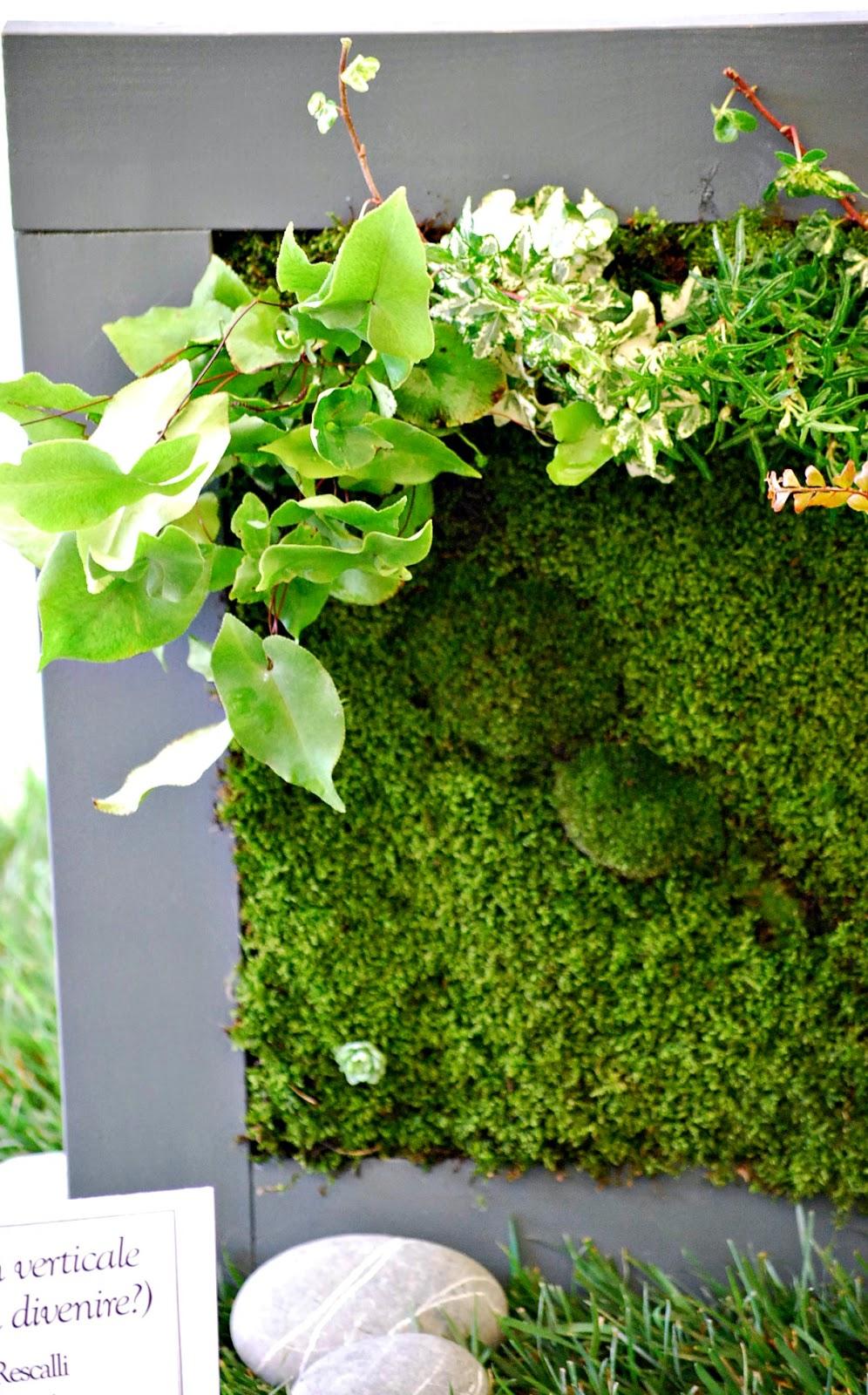 Fior d co giardino in miniatura - Giardino in miniatura ...