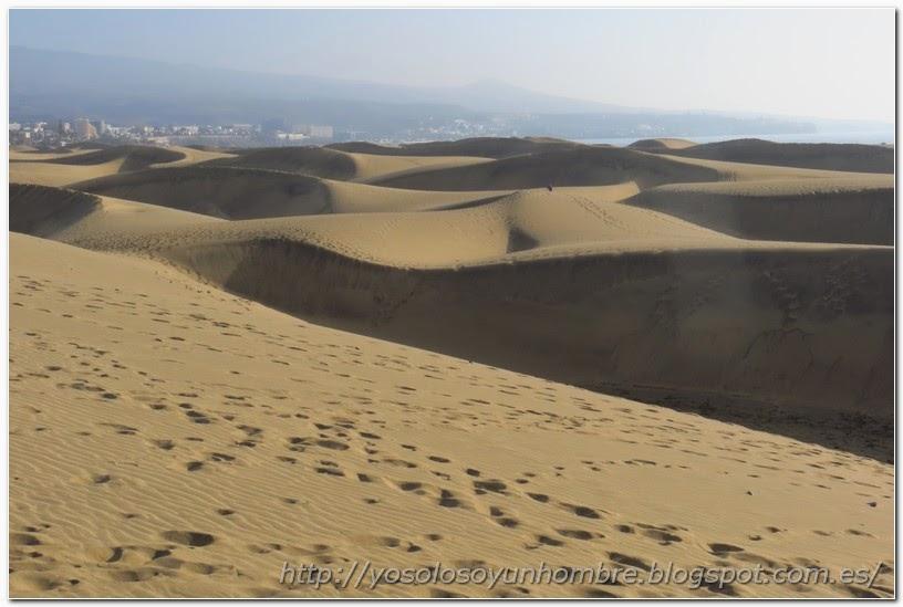 Vista de las dunas desde la cresta de una de ellas