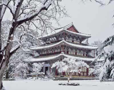 Pemandang Salju Terindah di Korea Selatan