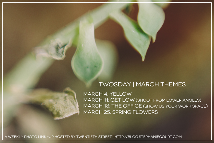 """March themes for Twosday photography link up"""