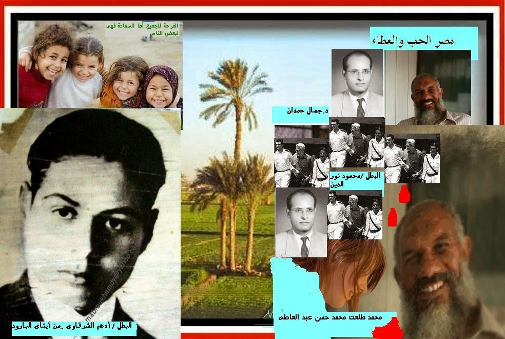 مصر الحب والعطاء