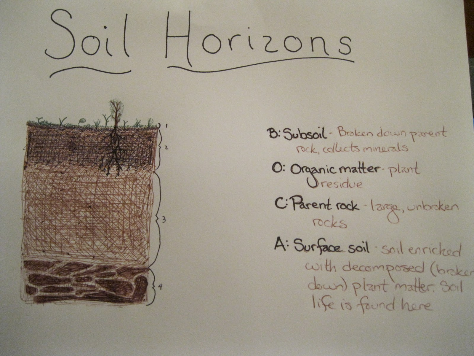 Explayration after school soil for Soil profile for kids
