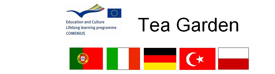 Tea Garden Comenius