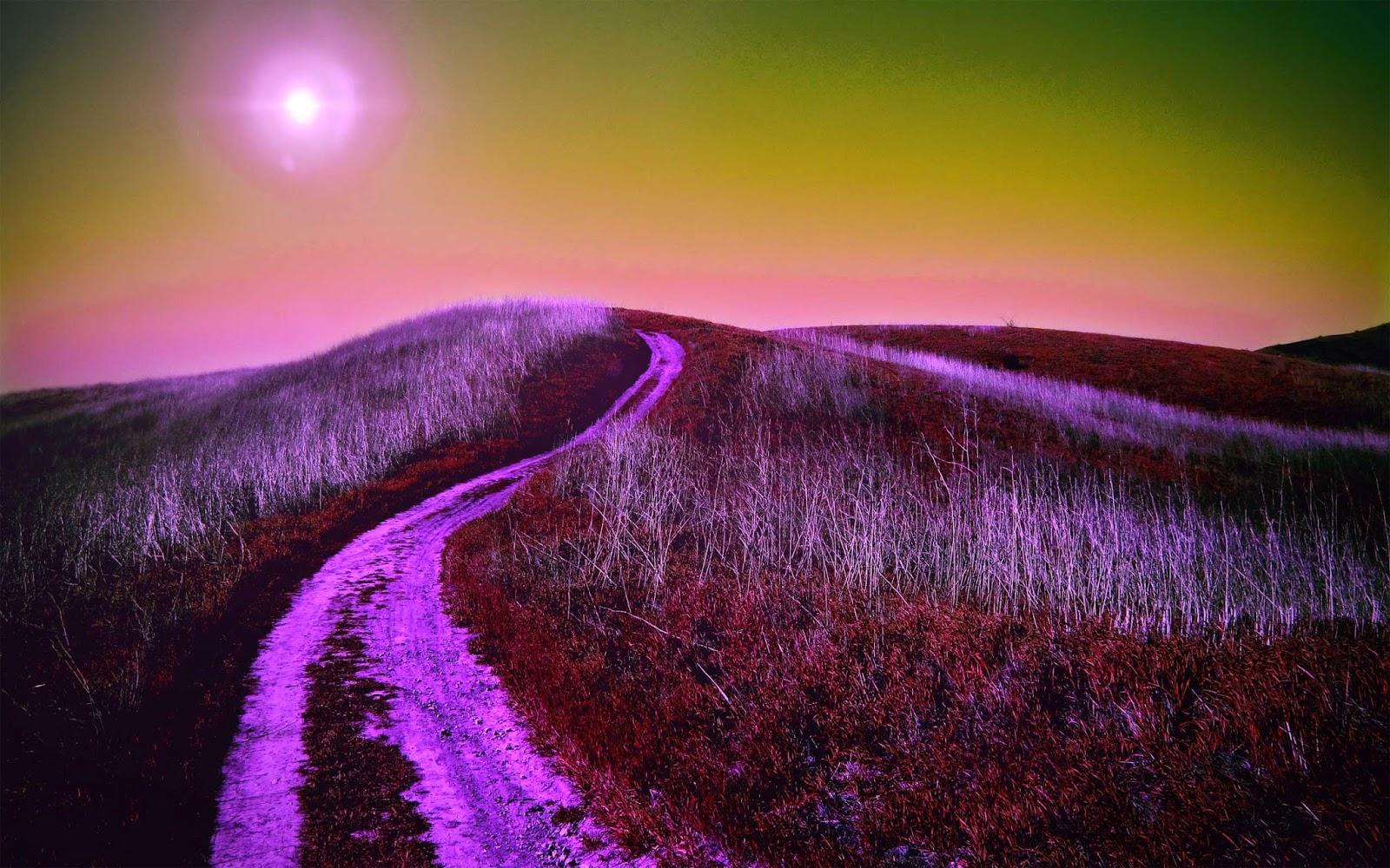 up_hill_road_natural_wallpaper