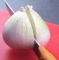cebolla para picar