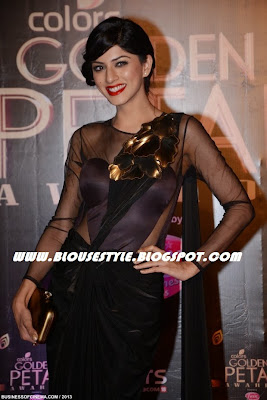 BLACK SAREE WITH NET SLEEVE