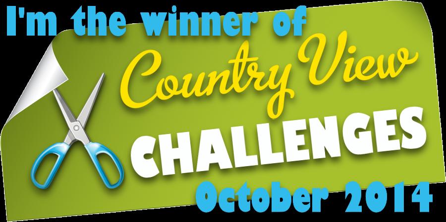 Winner october 2014