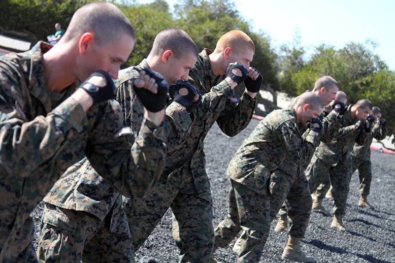 Do regular navy recruits learn hand to hand combat? - Quora