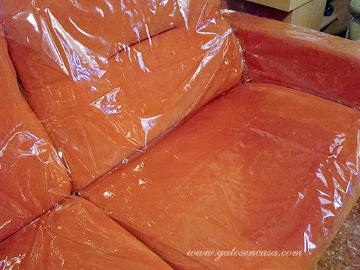 Proteger sof s camas y m s muebles del pipi de gato - Como hacer unas fundas para el sofa ...