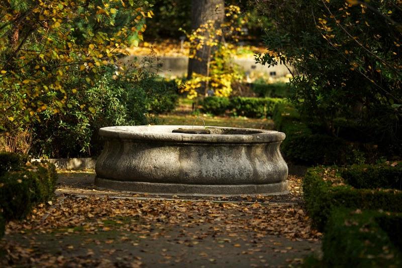 Fascinado con el real jard n bot nico de madrid for Como ir al jardin botanico