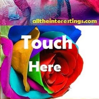 Whatsapp greeting cards happy holi whatsapp greeting cards m4hsunfo