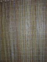 Bamboo Ok1
