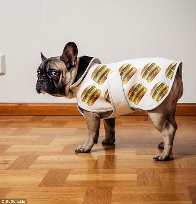 mcdonalds big mac dog coat pug