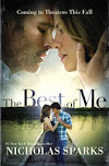 Sinopsis The Best Of Me