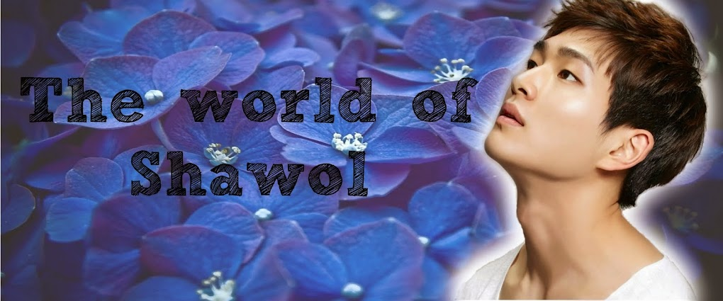 The World Of Shawol