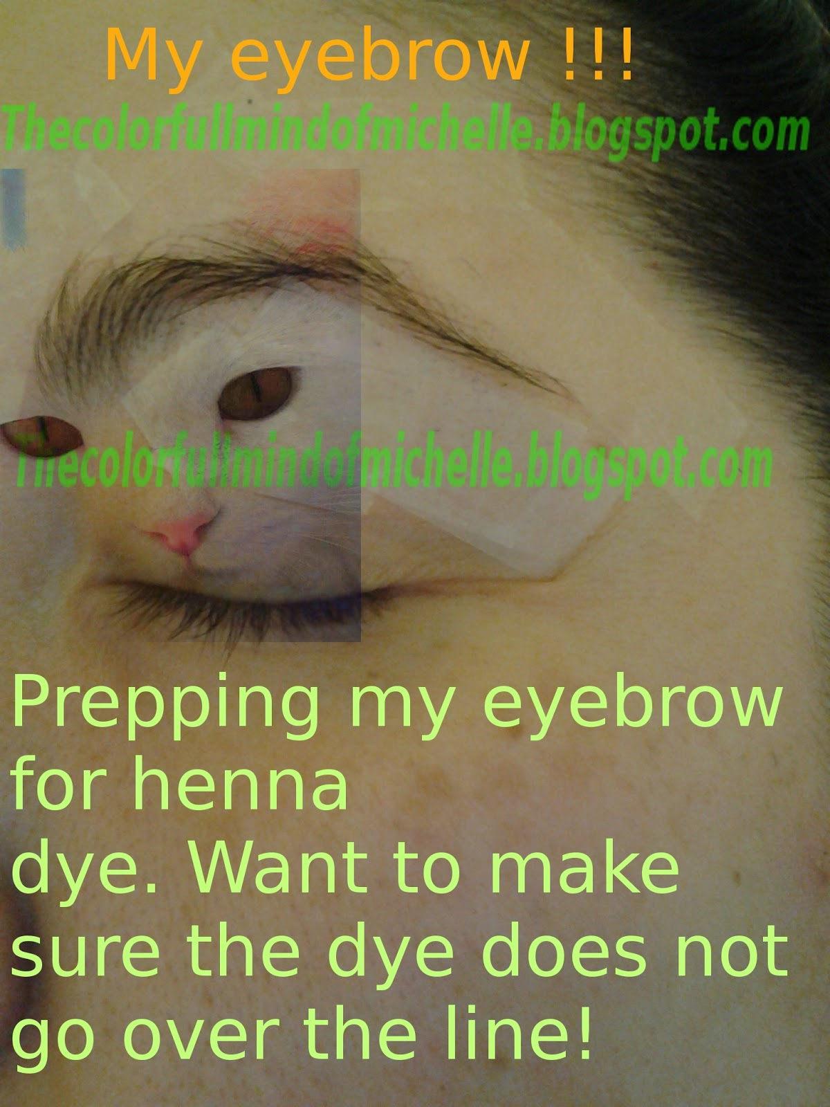 Mind Of Michelle How To Dye Eyebrows Using Henna