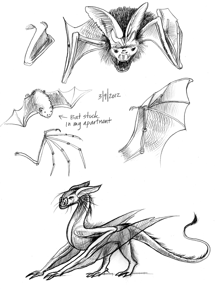 Dragon Wing Shape Bat Wing Dragon