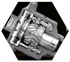Limited Slip Differential (LSD) All New Triton