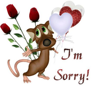 Sorry For All My