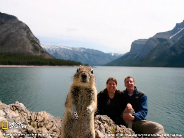 Inilah Foto Paling Terkenal Di Dunia Yang Tidak Sengaja Terfoto [ www.BlogApaAja.com ]