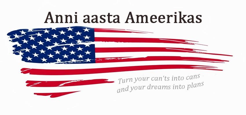Anni aasta Ameerikas