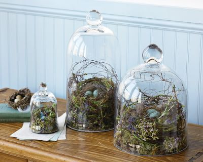Bell Jar Decorating Ideas Glamorous Domythic Bliss Bell Jars And Belle Displays Decorating Inspiration