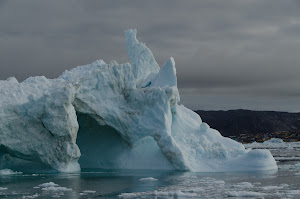 Every iceberg was a different shape ....
