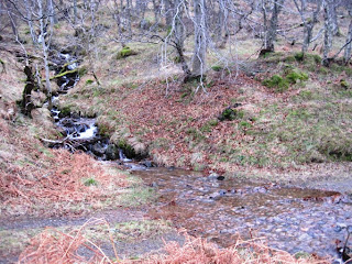 Pannanich Burn, near Ballater, Deeside