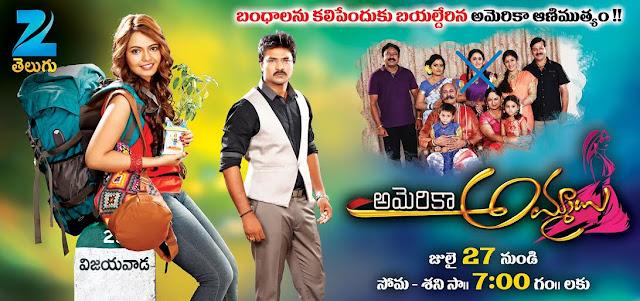 Zee Telugu in America Ammayi