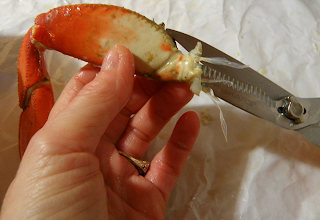 Using Shears on Crab Leg