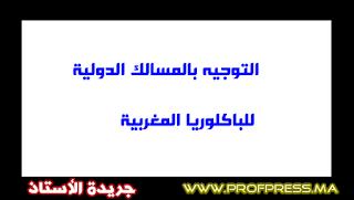 التوجيه بالمسالك الدولية للباكلوريا المغربية