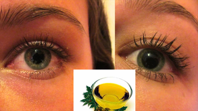 Natural Way To Make Your Eyelashes And Brows Thick Toronto