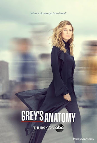 Grey's Anatomy Temporada 16 (HDTV 720p Ingles Subtitulada)