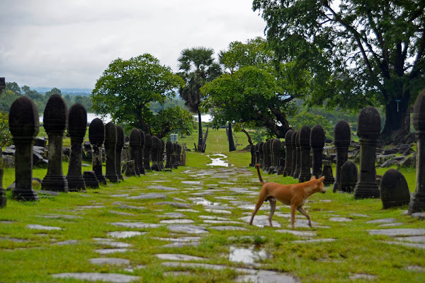 Santuario de Wat Phou, Pakse (Laos)