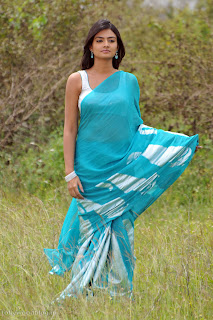 nikitha_narayana_hot_saree_stills_007.jpg