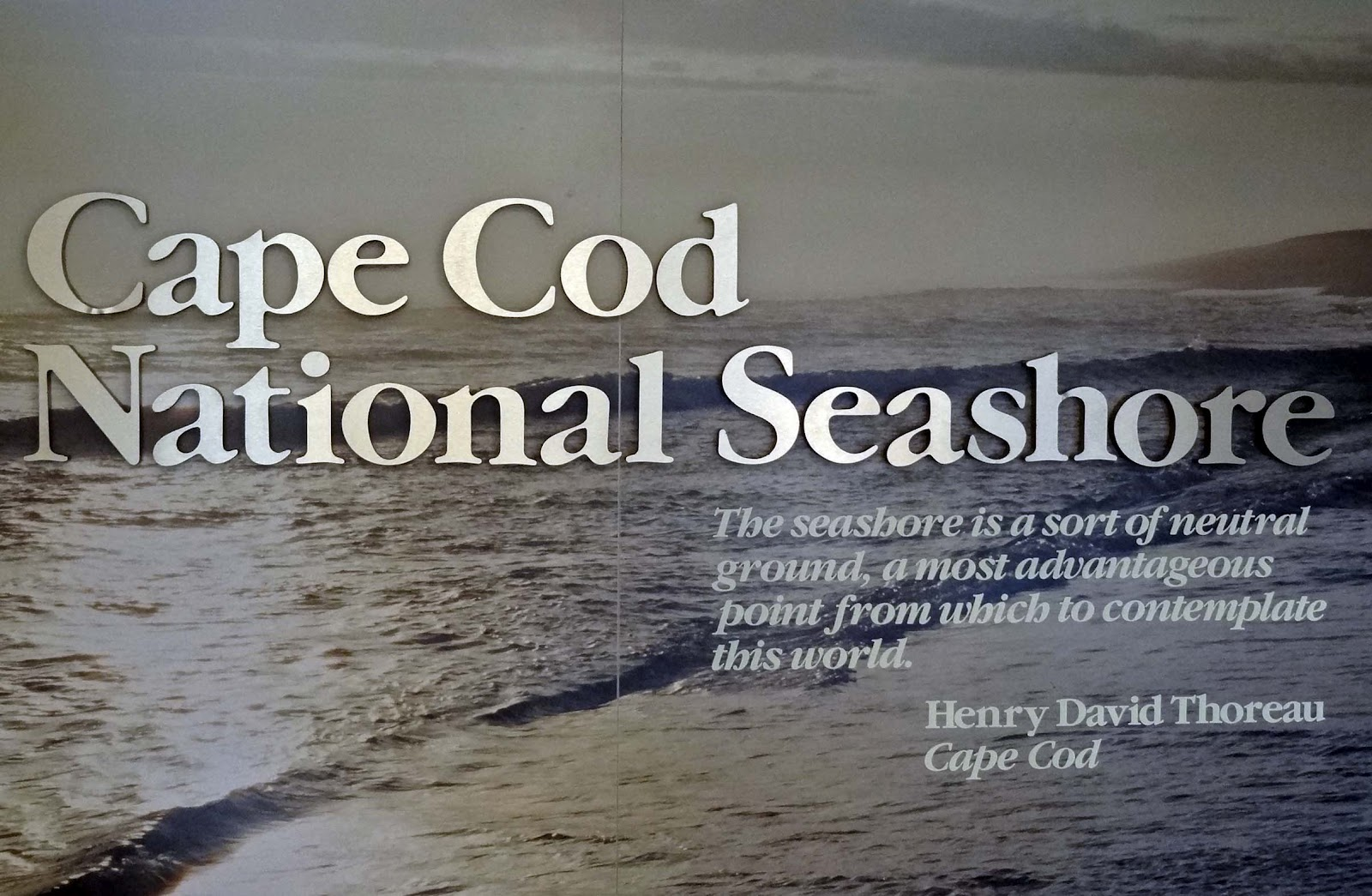 Best National Seashore Beach Cape Cod
