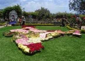Rose Garden Saputara