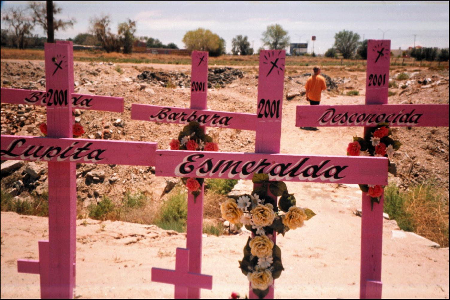 feminicide in the novel if i die in juarez by stella pope duarte