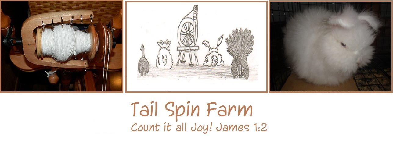 Tail Spin Farm