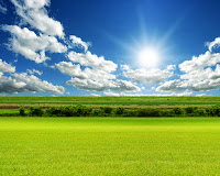 Sunshine Green Grass Field Full HD Nature Wallpapers Free Downloads For Laptop PC Desktop Backgrounds