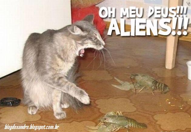 aliens.png (630×435)