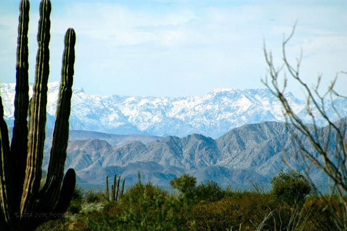 Sierra de San Pedro Mártir National Park Baja California Mexico